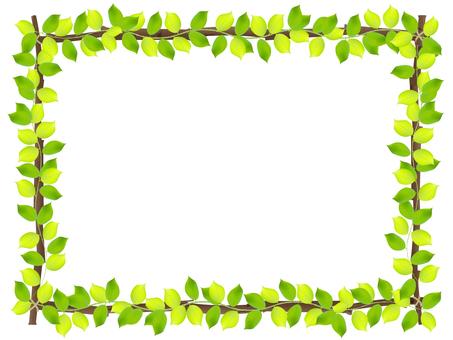 Branch frame leaves