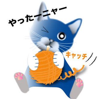 고양이 11