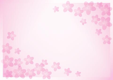 벚꽃을 사용한 배경 소재 2