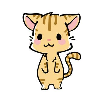 Deformed tiger cat illustration
