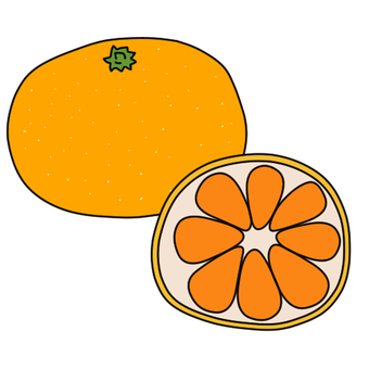Orange and round-cut oranges