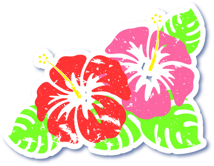 Hibiscus _ rubbing