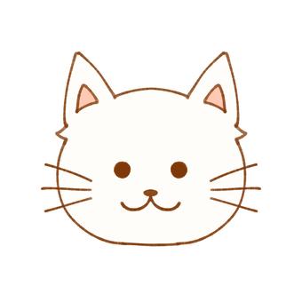 Cat (white)