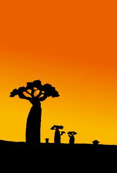 Savanna tree and sunset
