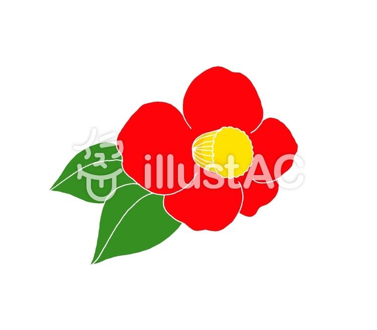 椿の花イラスト No 1338141無料イラストならイラストac