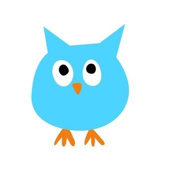 藍貓頭鷹1