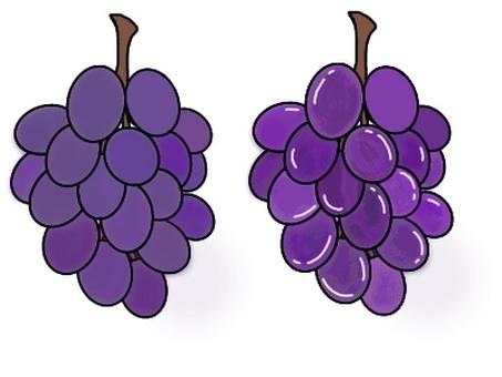 Grape (with black frame)