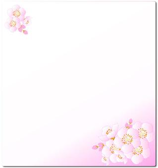 Cherry Blossom Flower Card