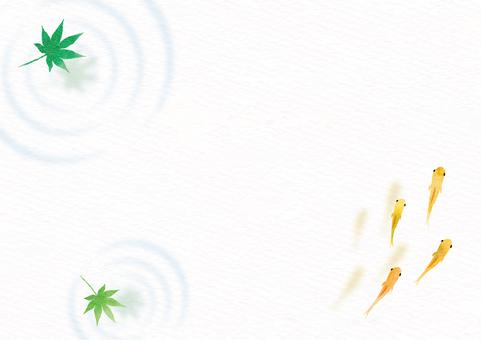 새잎과 송사리