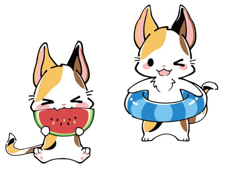 Three-eyed cat summer illustration (floating ring & watermelon)