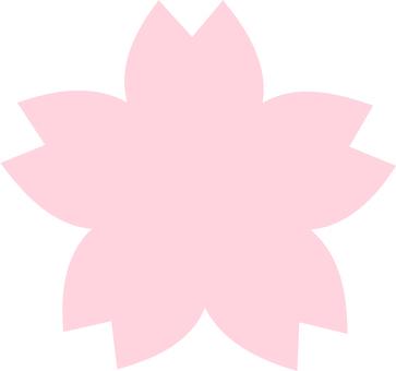 Cherry blossom petal material