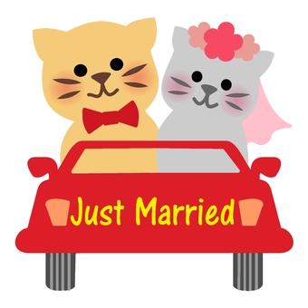 I got married Color 2