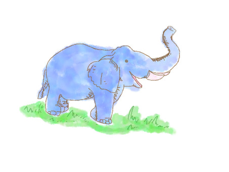 Elephant in the grassland