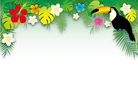 White Background Tropical Frame