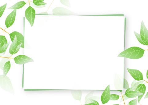 Green frame 12