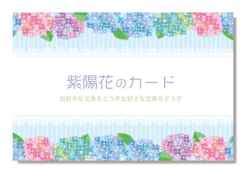 수국 카드 / 프레임