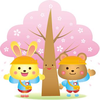 Illustration of entrance ceremony under the cherry tree