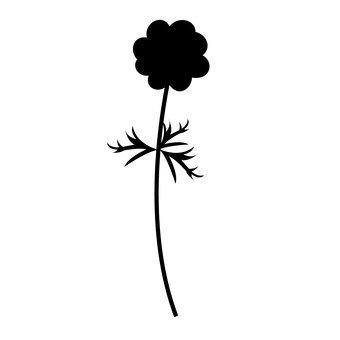Anemone silhouette