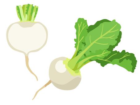 Ingredients _Vegetable