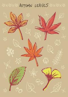 秋の落ち葉 手書き風イラストセット