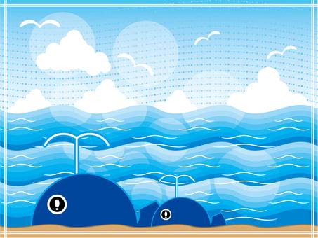 바다 고래 배경 프레임