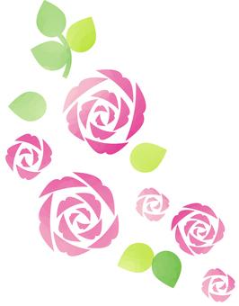 장미 삽화