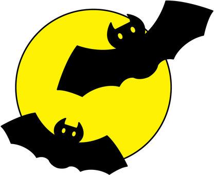 蝙蝠和月亮