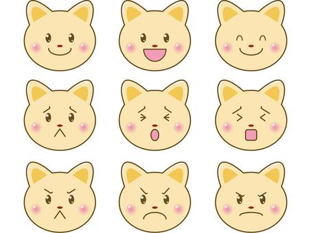 貓/臉上的插圖