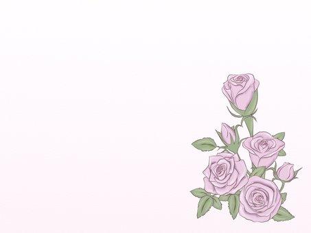 부드러운 장미 코너 프레임