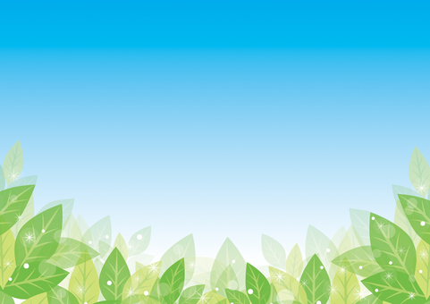 Background 03 of green leaves and blue sky