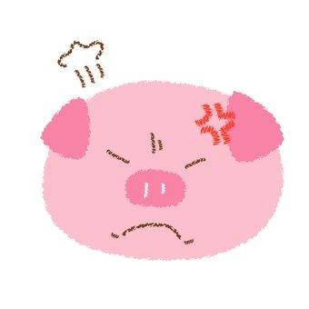 학질 돼지