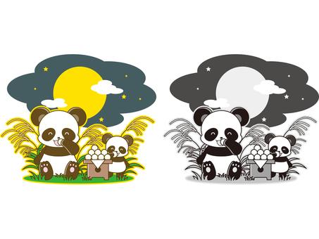 Panda illustration _ Tsukimi _ 01