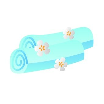 Esthetic Towel