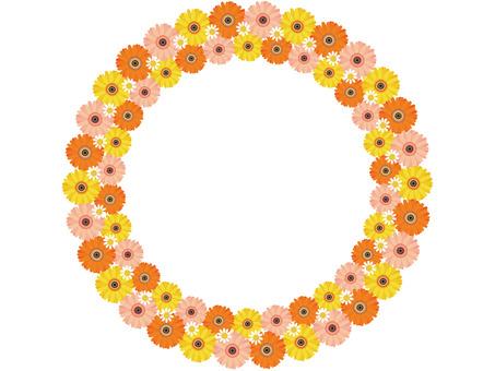 Frame_Gerbera Circle