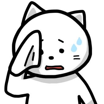 Cat wiping sweat