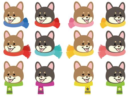 柴犬-笑顔-斜め横顔-マフラー