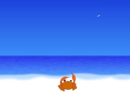 Sea and crab