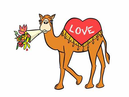 Bouquet and camel