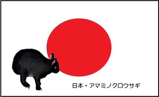 Flag of the world and rare animal 7