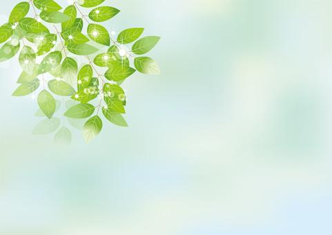 Glittering leaves & sky 7