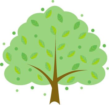 Well tree leaves