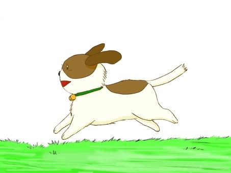 Running dog 02