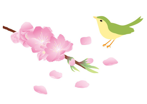 Peach blossoms and birds