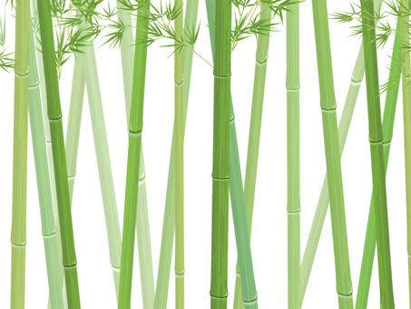 Bamboo grove_side_background