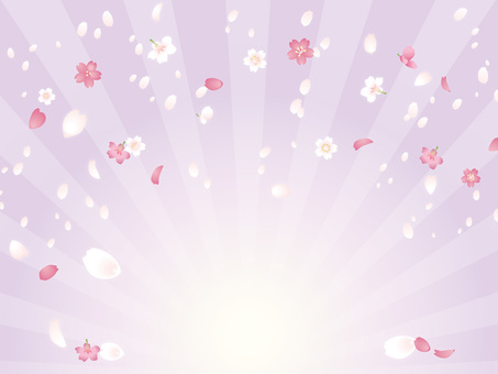 Spring 桜 radiation background A02