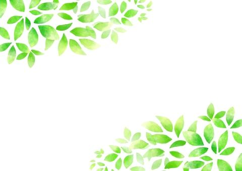 Tsirikiri painting fresh green