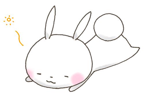 RUNRUN rabbit 20