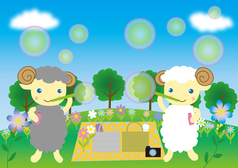 Sheep's soap bubble
