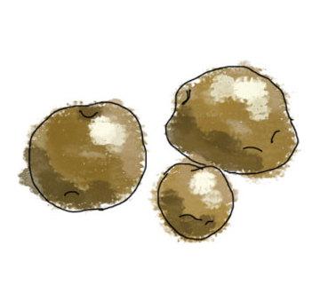 水彩繪畫土豆