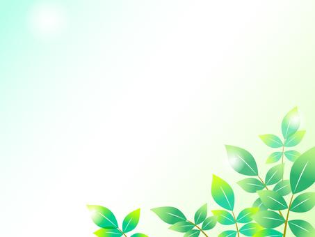 9-1. Fresh green